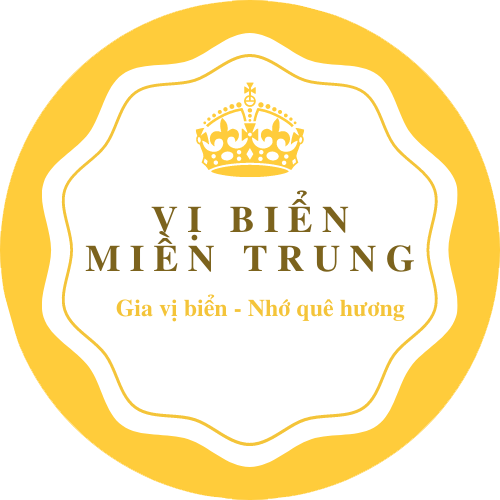 vibienmientrung.com