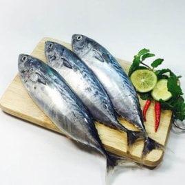 cá ngừ khay 3 con - vị biển miền trung