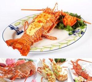 Tôm hùm - Vị biển miền trung chuyên cung cấp hải sản tươi sống, chất lượng
